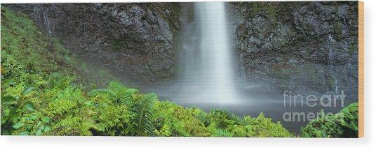 Kauai Inland Falls Wood Print by David Cornwell/First Light Pictu - Printscapes