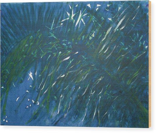 Kauai Night Wood Print by Adrian Simpson