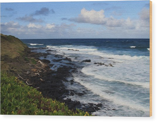 Kauai Shore 1 Wood Print