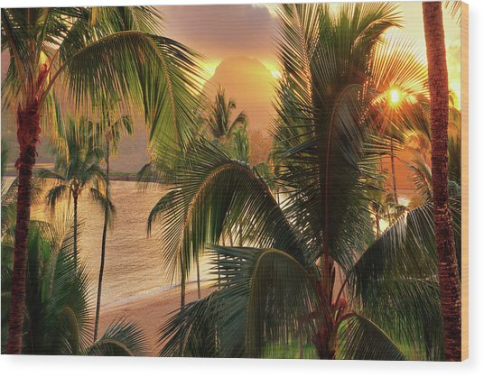 Olena Art Kauai Tropical Island View Wood Print