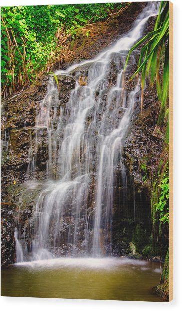 Kauai Water Cascade Wood Print