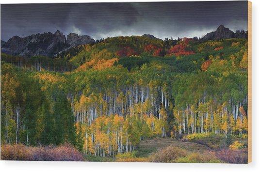 Kebler's Coat Of Many Colors Wood Print