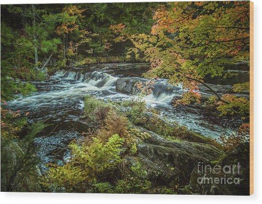 Kejimkujik National Park Wood Print