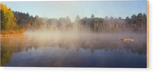 Kennedy Pond Wood Print