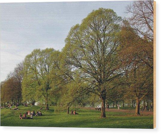 Kensington Gardens Wood Print by David L Griffin