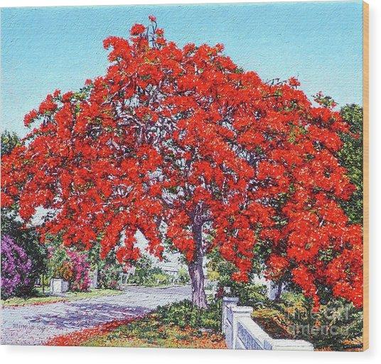 Kent Street - Nassau East Wood Print