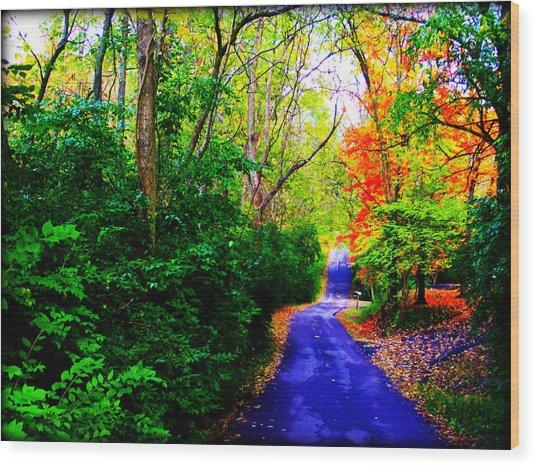 Kentucky Lane Wood Print