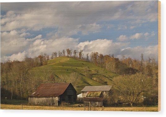 Kentucky Mountain Farmland Wood Print