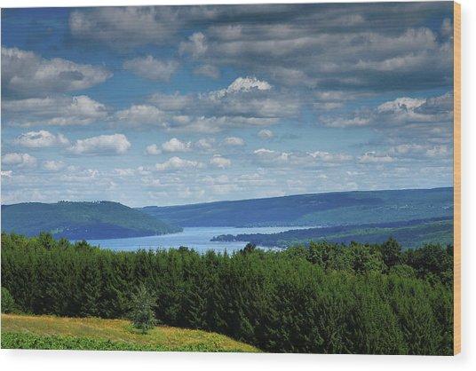 Keuka Landscape V Wood Print