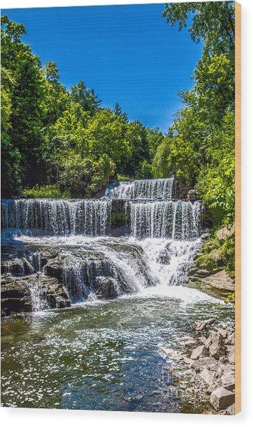 Keuka Outlet Waterfall Wood Print