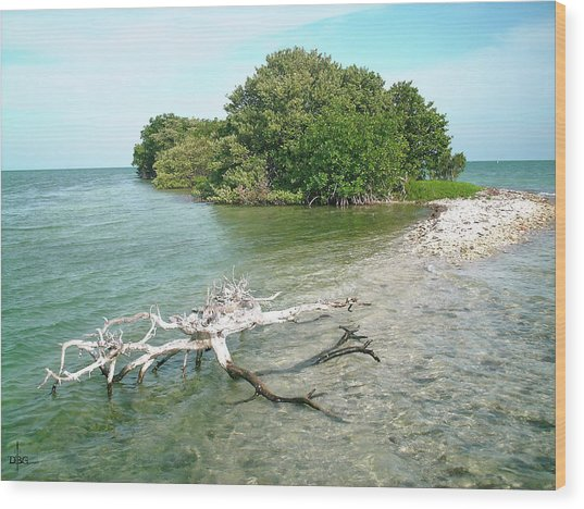 Key Largo Out Island Wood Print