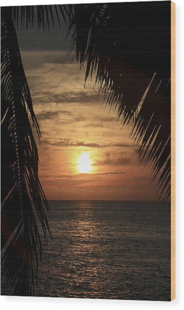 Key West Palm Sunset 2 Wood Print