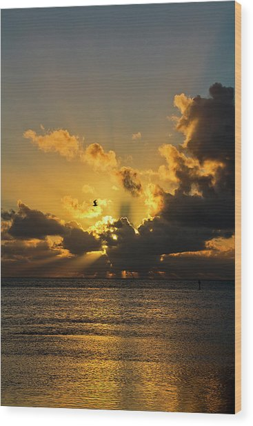 Key West Sunrise 39 Wood Print