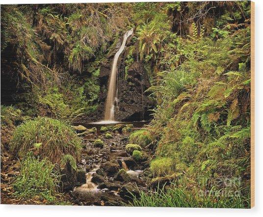 Kielder Forest Waterfall Wood Print