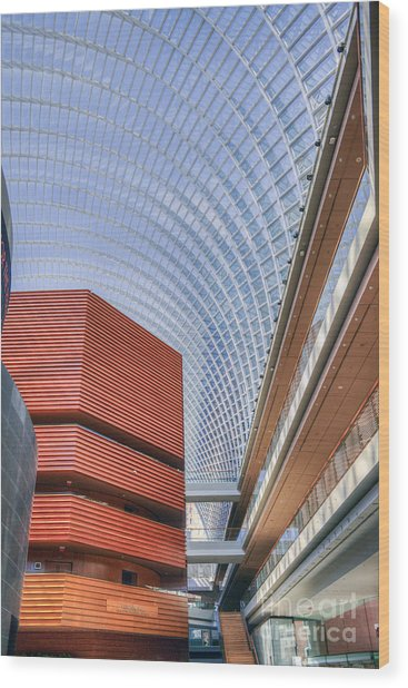Kimmel Center For The Performing Arts Wood Print