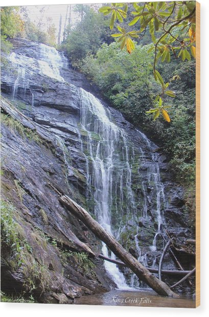 King Creek Falls Oconee County Sc Wood Print by Lane Owen