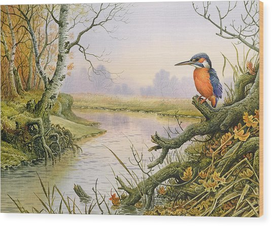Kingfisher  Autumn River Scene Wood Print