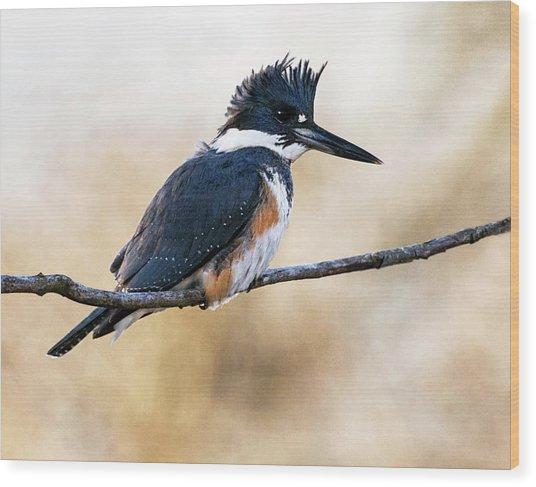 Kingfisher Listens Wood Print