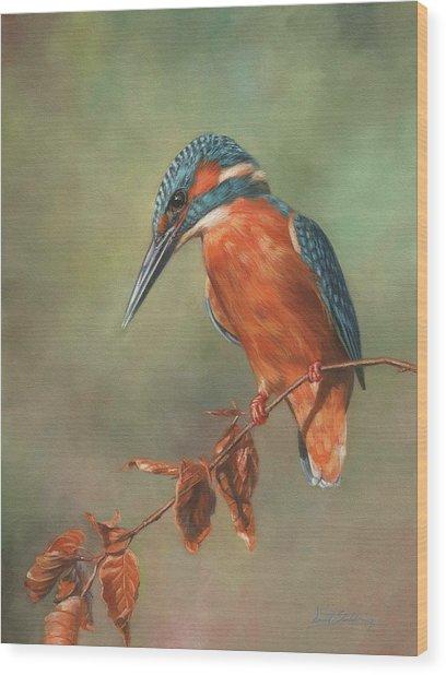 Kingfisher Perched Wood Print