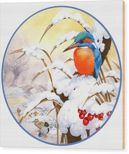 Kingfisher Plate Wood Print