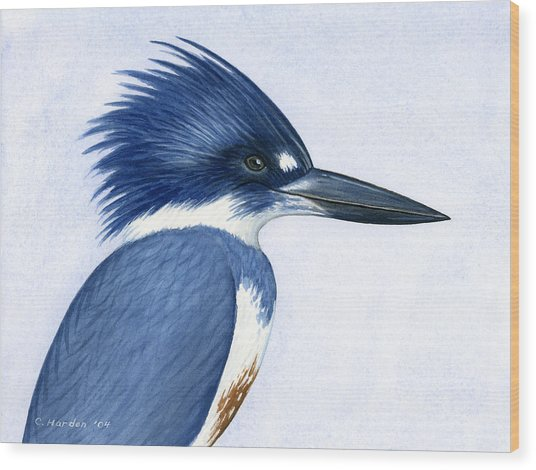 Kingfisher Portrait Wood Print