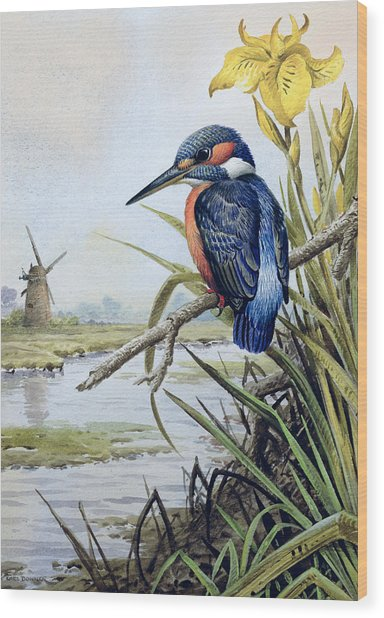 Kingfisher With Flag Iris And Windmill Wood Print