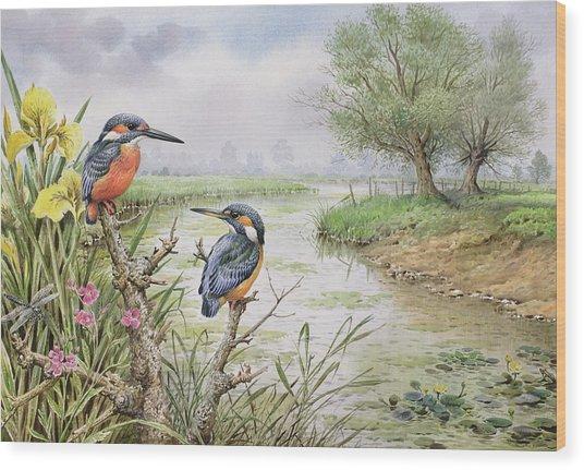 Kingfishers On The Riverbank Wood Print
