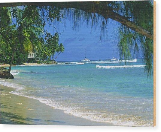 King's Beach, Barbados Wood Print