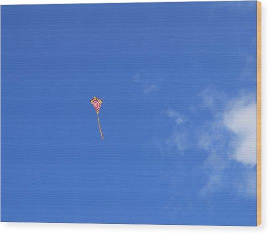 Kite Flying  Wood Print by Carol McCutcheon