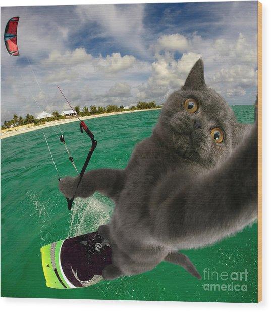 Kite Surfing Cat Selfie Wood Print