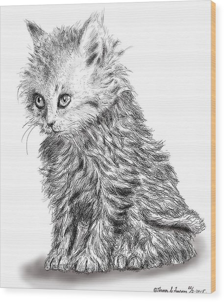 Kitten #1 Wood Print