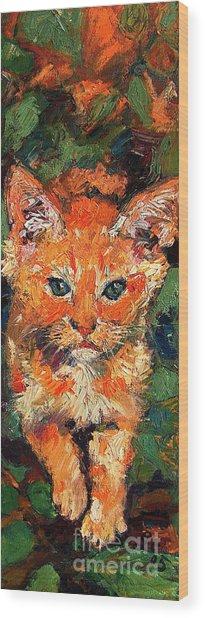 Kitten Orange Tabby Impressionist Oil Painting Wood Print