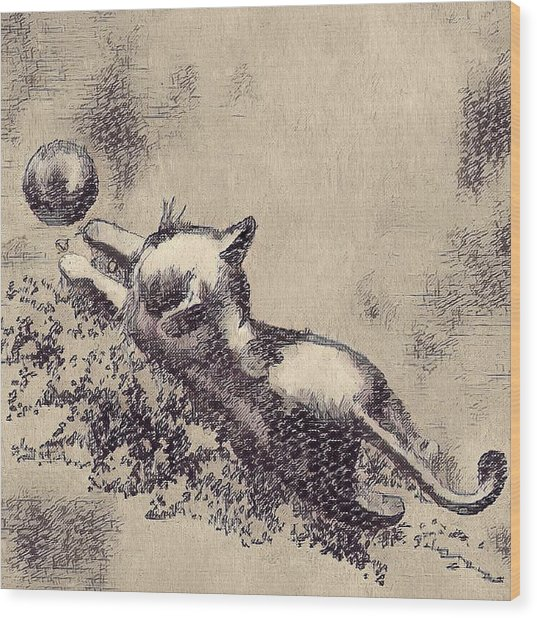 Kitten Playing With Ball Wood Print