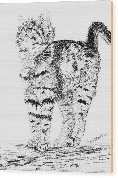 Kitty Stretch Wood Print by Deb Stroh Larson
