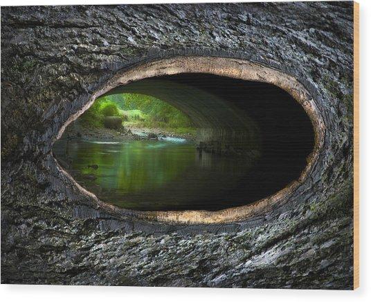 Knot Hole 2 Wood Print