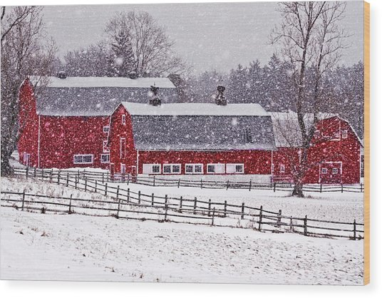 Knox Farm Snowfall Wood Print