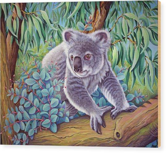 Koala Wood Print