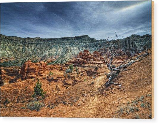 Kodachrome Basin Afternoon Wood Print