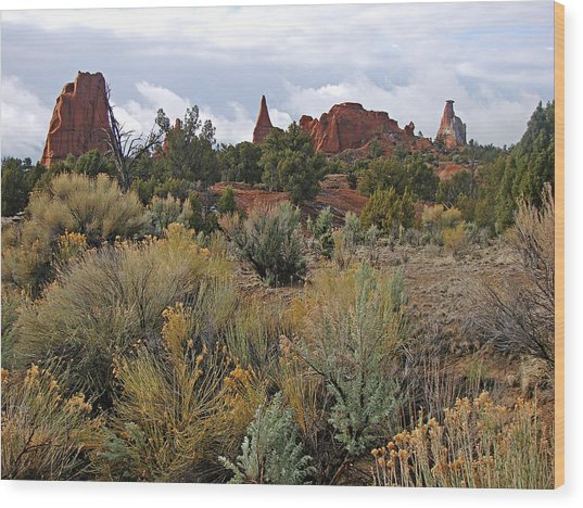 Kodachrome Basin Wood Print