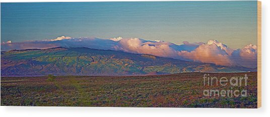 Kohala Mountains - Big Island Wood Print
