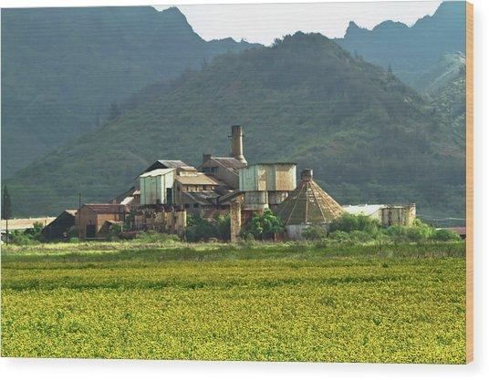 Koloa Sugar Mill Wood Print