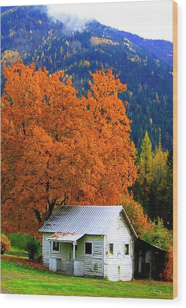 Kootenay Autumn Shed Wood Print