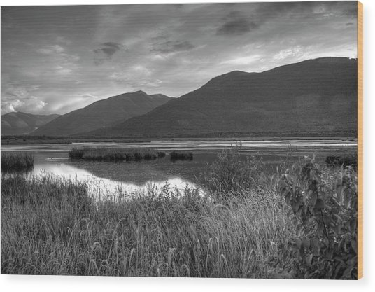 Kootenay Marshes In Black And White Wood Print