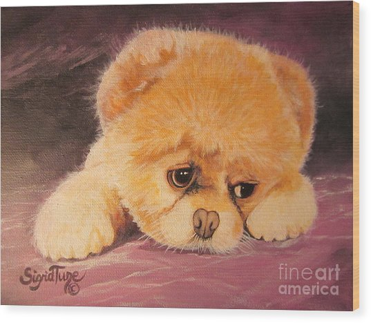 Flying Lamb Productions     Koty The Puppy Wood Print
