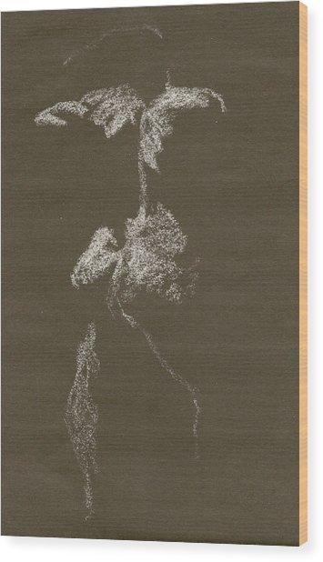 Kroki 1997, Pre.3 Vit Krita, Figure Drawing White Chalk Wood Print