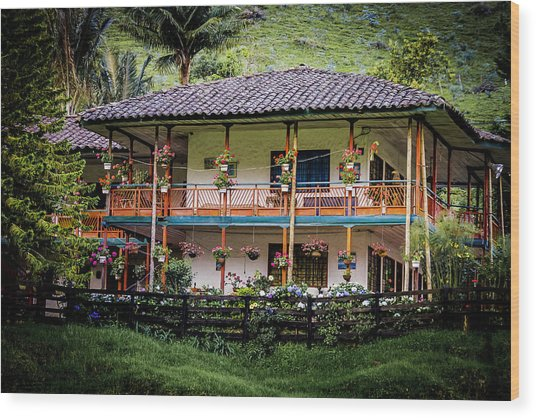 La Finca De Cafe - The Coffee Farm Wood Print