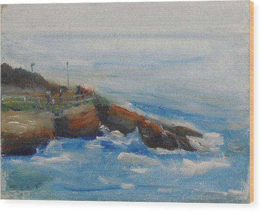 La Jolla Cove 007 Wood Print