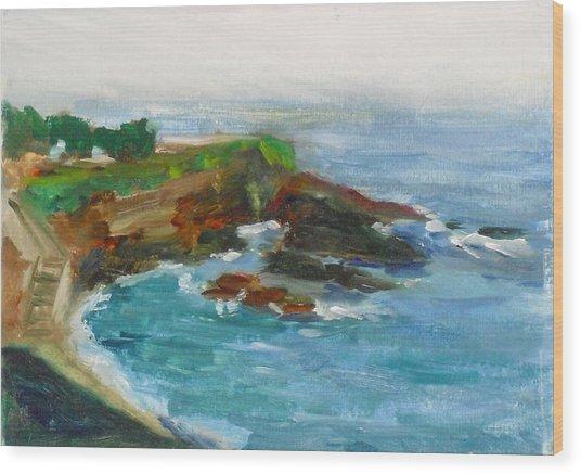 La Jolla Cove 012 Wood Print