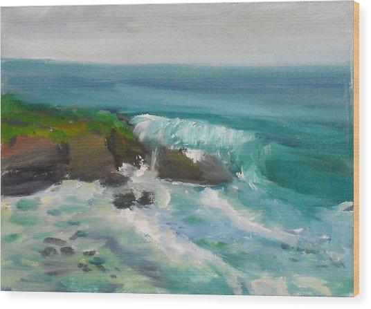 La Jolla Cove 015 Wood Print