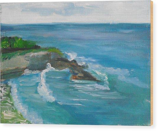 La Jolla Cove 033 Wood Print